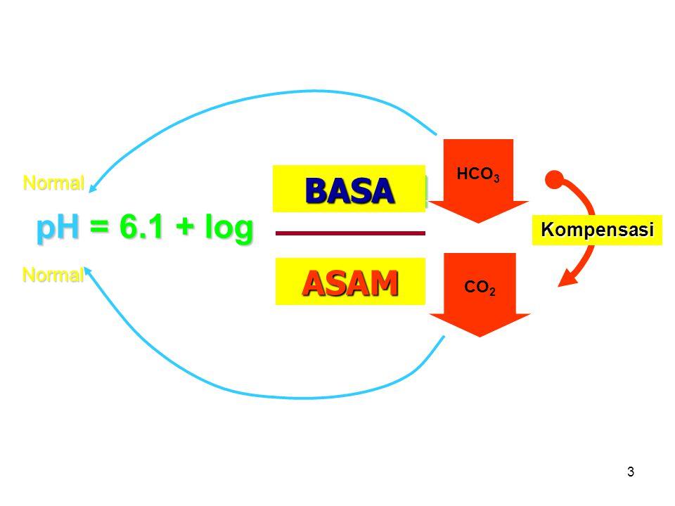 BASA [HCO3-] GINJAL ASAM PARU
